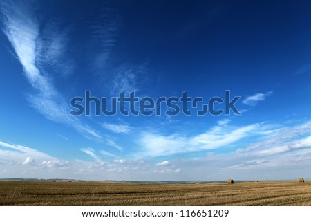 dark blue sky and yellow autumn field