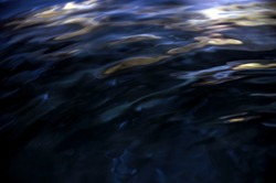 Dark Blue water wave and reflection. soft focus and blur