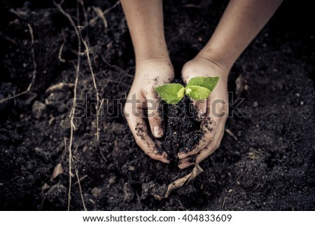 Dark color tone. Selective focus on Little seedling in black soil on child hand. Earth day concept.