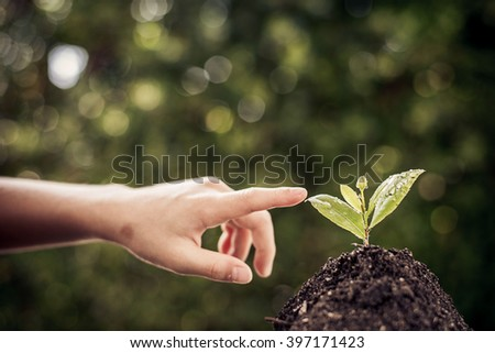 Dark color tone. Selective focus on Little seedling in black soil point by child finger. Earth day concept. #397171423