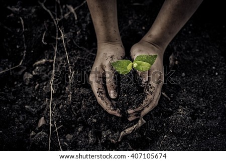 Dark colour tone to generate dirty effect of the selective focus on young little seedling in black soil on child hand. Earth day concept.