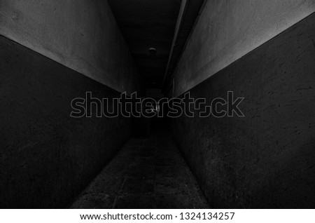 Dark corridor. Mystical interior of dark empty corridor, tunnel in an abandoned house. Dark mysterious corridor. The interior of an abandoned house, road to hell. An old abandoned building #1324134257