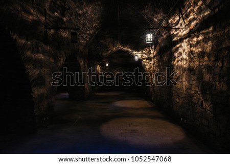 Dark corridors of old time castle dungeon light with few lamps #1052547068