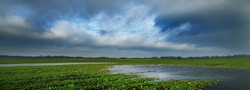 Dark dramatic rain clouds above the green field. Autumn in Latvia. Idyllic rural scene. Pastoral landscape. Picturesque panoramic view. Ecology, environment, climate change, fickle weather, seasons
