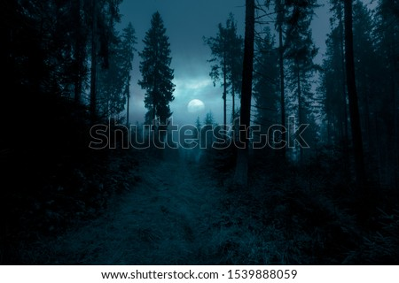 Dark, foggy, mysterious forest. Full moon on the sky. Halloween backdrop.