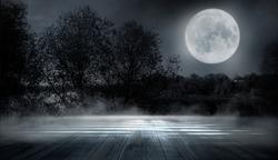 Dark forest. Gloomy dark scene with trees, big moon, moonlight. Smoke, shadow. Abstract dark, cold street background. Night view.