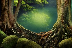 Dark forest, old trees, roots, mossy stones and mysterious lighting