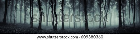 dark forest panorama fantasy landscape #609380360