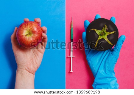Dark Genetically Modified Tomato on Pink or Natural Red Apple on Blue. GMO Concept. #1359689198
