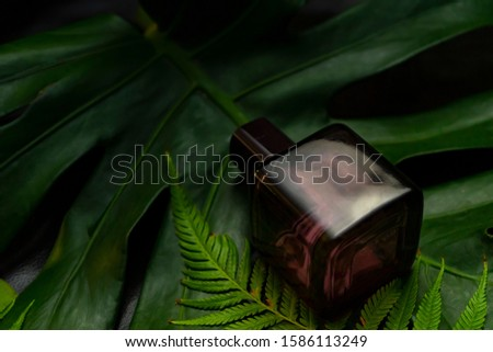 Dark glass bottle of perfume surrounded with leave and green branches on black background.Natural aromatic produce.