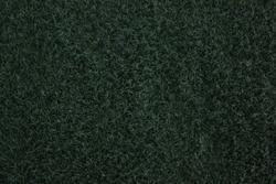 Dark Grasses