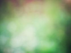 Dark green bokeh background .