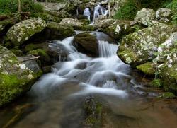 Dark Hollow Falls Hiking Trail Shenandoah National Park Skyline Drive Virginia June Summer