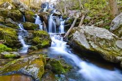 Dark Hollow Falls, Shenandoah National Park, VA, USA