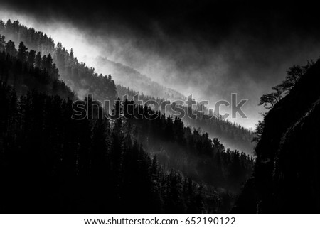 dark landscape with foggy forest #652190122
