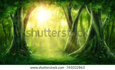 Dark magic forest with sunshine #765032863