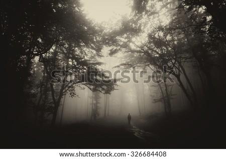 dark misty forest with man on...