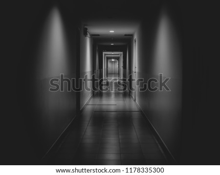 Dark mysterious corridor in building. Door room perspective in lonely quiet building with light on black and white style. horror landscape concept. #1178335300