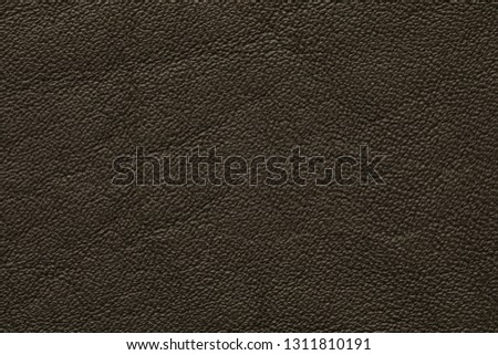 dark olive colored leather texture #1311810191