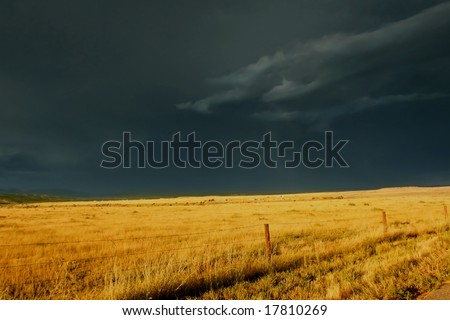 Dark, ominous storm clouds roll over golden prairie grass highlighted by the setting sun.