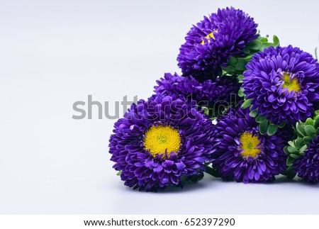 Free photos purple flower with yellow center avopix dark purple flowers with yellow center 652397290 mightylinksfo