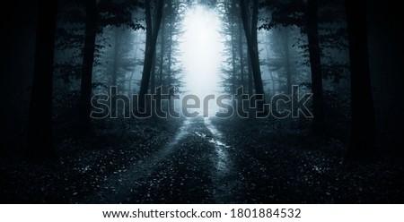 dark road through fantasy forest at night, scary halloween landscape Сток-фото ©