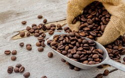 Dark roasted coffee beans with scoop on wooden background