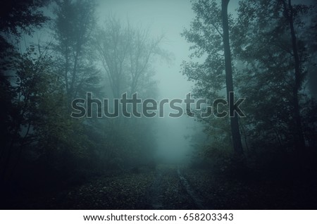 dark scary forest path at night surreal Halloween background #658203343