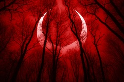 dark scary forest scene with surreal eclipse, apocalyptic landscape