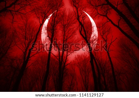 dark scary forest scene with surreal eclipse, apocalyptic landscape  ストックフォト ©