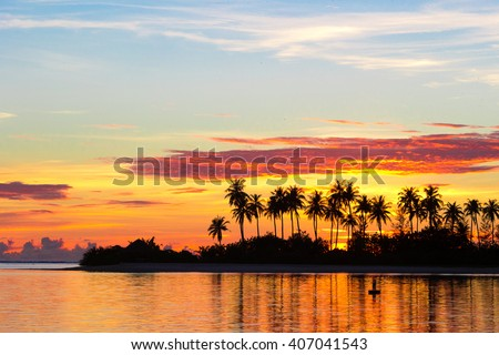 Dark silhouettes of palm trees and amazing cloudy sky on sunset at tropical island in Indian Ocean