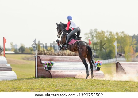 dark sorrel horse jumping during eventing competition