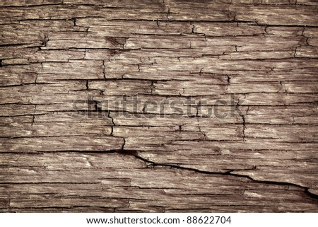 Dark texture of wood pattern background