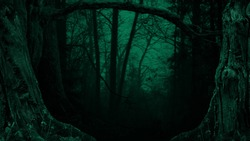 Dark twilight fantasy forest Crooked branches Tree silhouettes Enchanted woods Cyan blue mist Old trunks Hollows Mysterious scary game background framed by dead trees