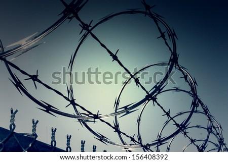 Dark zone of barbwire fences