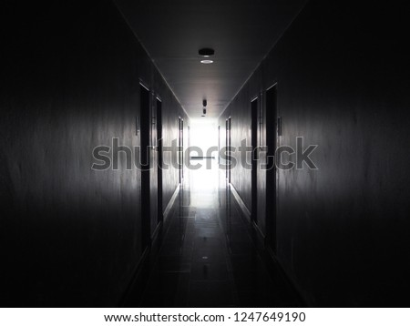 darkness to lighting path. #1247649190