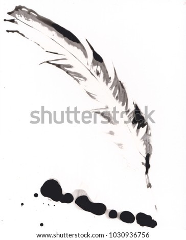 Darkroom photography experiments. Beautiful photograms made in the darkroom using developer and fixer on light sensitive paper. Black and white feather in painterly technique. Monochromatic.