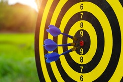 Dartboard on darts sport outdoor with green filed and sunlight background with arrows hitting the center target  also known as