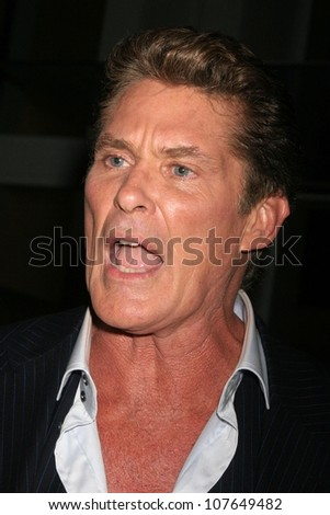 David Hasselhoff  at the Launch Party for Ikea's 'Easy To Assemble' Web Series. Architecture and Design Museum, Los Angeles, CA. 09-18-08