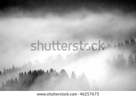 dawn fog in the mountains