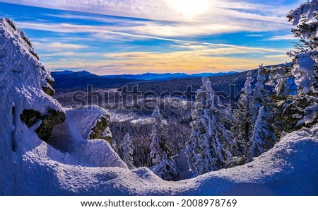 Dawn in a snowy mountain forest. Winter snow forest in mountains at dawn. Dawn in winter snow mountain forest