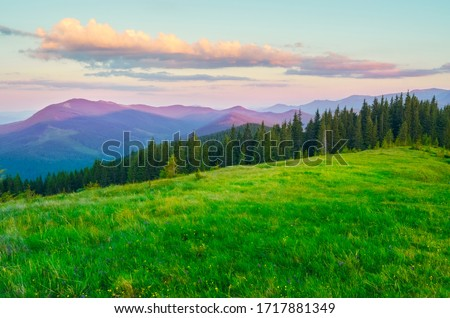Dawn in the mountains. Wide green meadow in the foreground. Clouds illuminated by the sun. Rich color palette. Summer Carpathians.