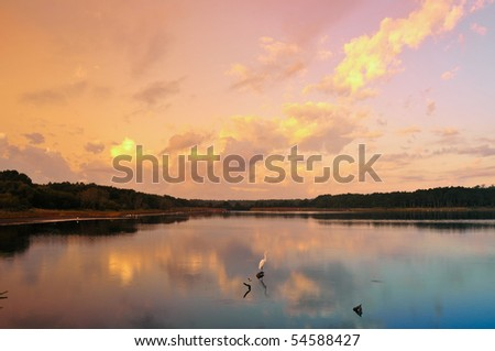 Dawn on a low counry marshy lake with a snowy egret