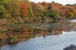 Dawn on an Autumn Lake.  Destination Tobyhanna State Park in Pennsylvania