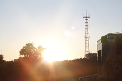 Dawn over the city. The sun over a tree with golden rays and a tele tower in Minsk 2019