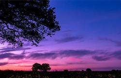 Dawn over the rural field. Beautiful sunrise landscape. Purple dawn. Sunrise in nature landscape