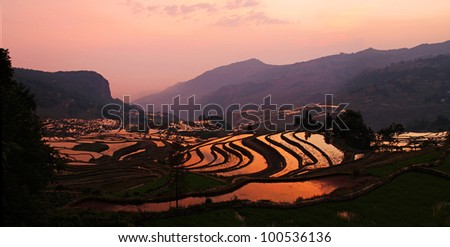 Dawn over the Terraced Rice Fields of Yuan Yang, Yunnan Province, China