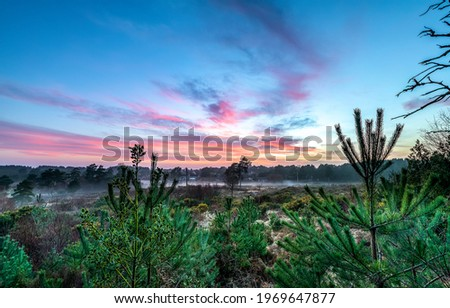 Dawn with fog in nature landscape. Early morning fog at dawn. Early morning dawn. View of early morning dawn