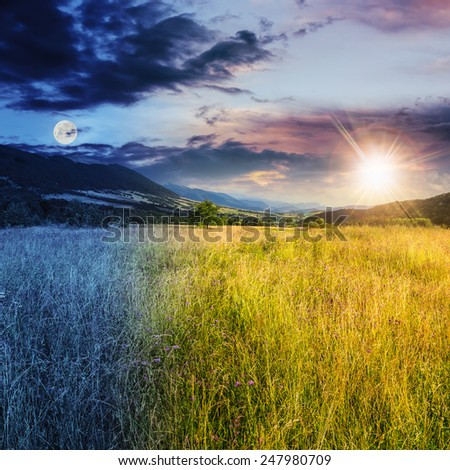 day and night collage of composite mountain summer landscape. Meadow with wild flowers in mountains