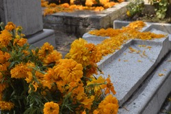Day of the dead in Mixquic one town in Mexico. We celebrate this day and we go to the cemetery